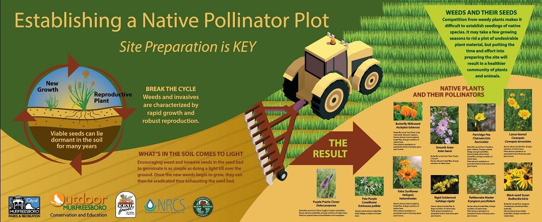 Sign with text and graphics explaining the process and reason for installing a pollinator plot