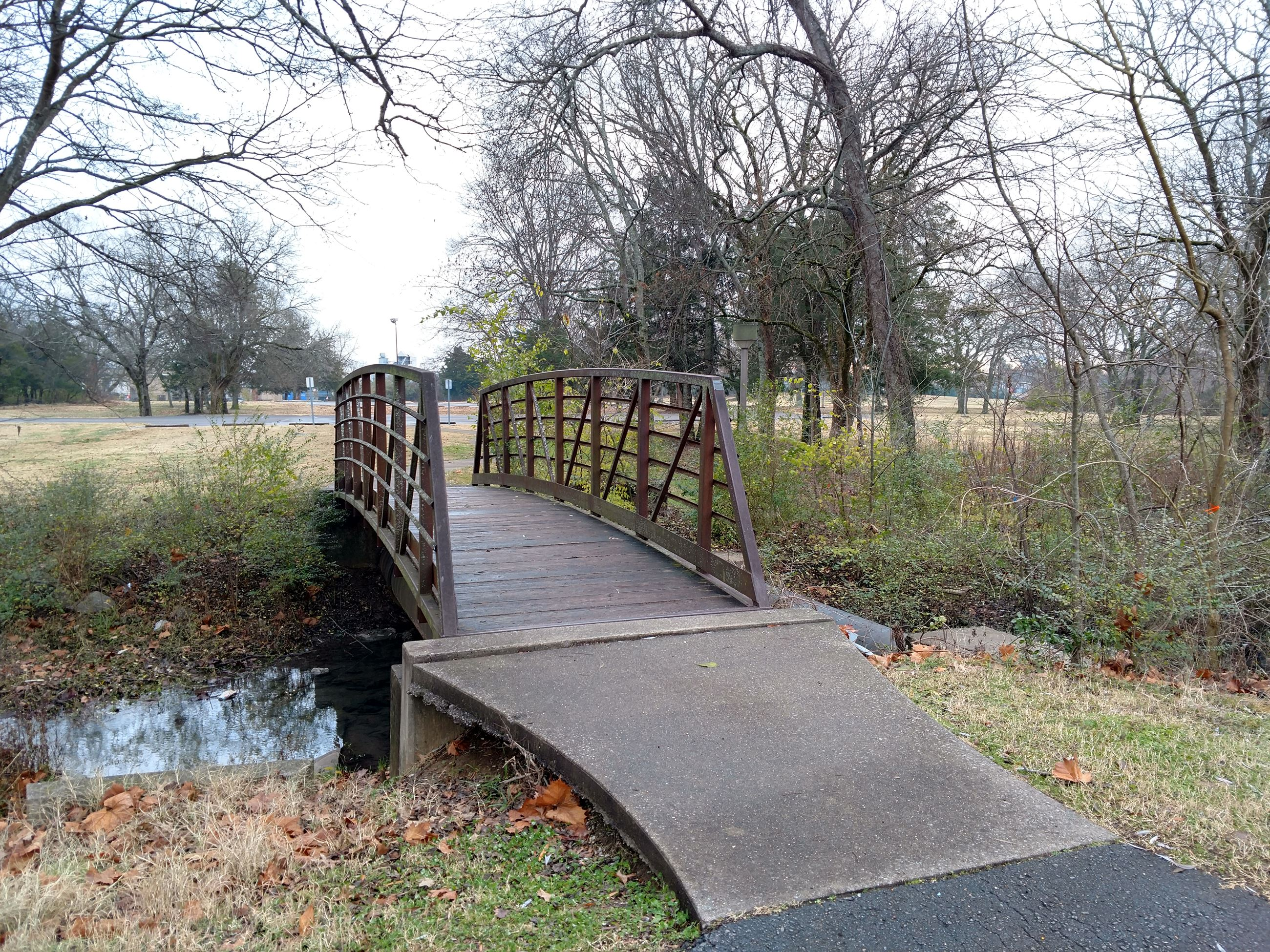 Small footbridge with metal railings over vegetation-bordered creek with water. Late fall.