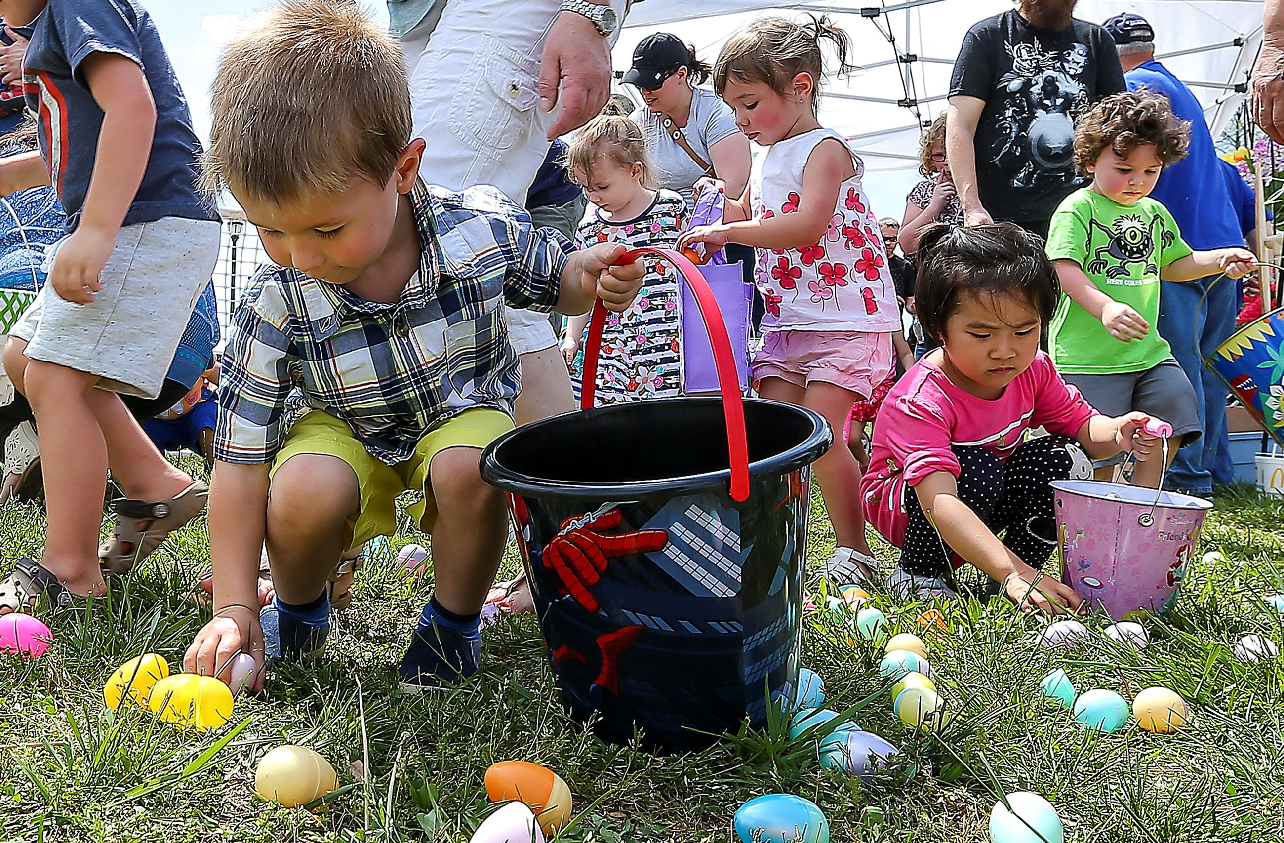 Image result for harris easter egg hunt murfreesboro